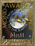 Moon Award: Bronze